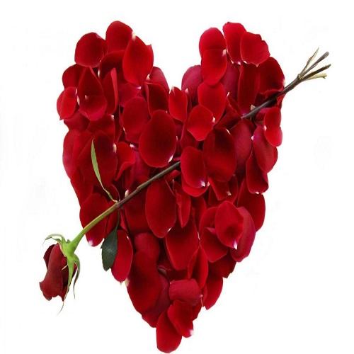 Les meilleurs titres de la journée de la Saint Valentin